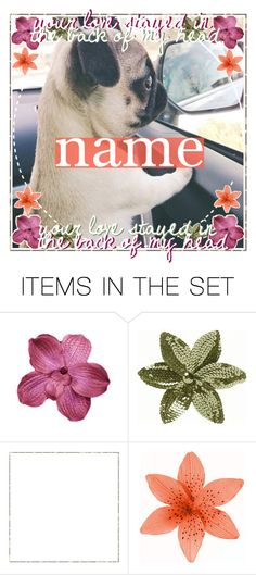 """&♡ ♡ ; open icon"" by daisy-creations ❤ liked on Polyvore featuring art and mirabellesicons"