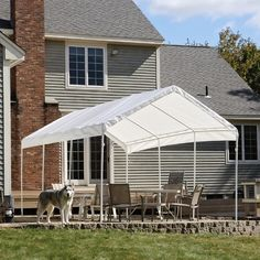 ShelterLogic 20 x 10 All-Purpose Canopy - 8 Leg - Canopies at Hayneedle