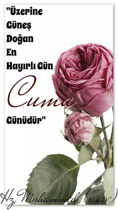 Muhammed Sav, Allah, Sayings, Flowers, Plants, Heart, Lyrics, Flora, God