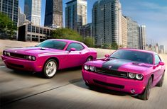 The Cool Hunter - 2010 Dodge Challenger