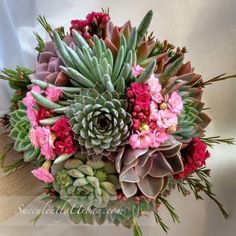Succulent Bouquet Nicole Purple and green bouquet - Modern Succulent Corsage, Succulent Wedding Cakes, Diy Wedding Bouquet, Diy Bouquet, Wedding Flowers, Pink Succulent, Bridal Bouquets, Succulent Cuttings, Succulent Terrarium