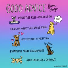 Good advice from dogs. Prioritize rest and relaxation. Dogs are the best. Living the Dog life. Keep Your Chin Up, Things To Do When Bored, Self Love Affirmations, Color Quotes, Rest And Relaxation, Dog Quotes, Good Advice, Dog Mom, Life Lessons