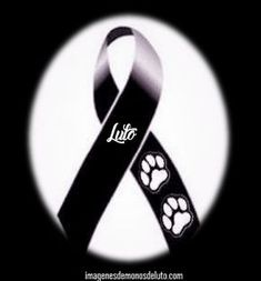 Add a new entry Miss My Best Friend, Best Friends, Desiderata, Condolences, Love Pet, Black Ribbon, Yorkie, Funeral, Animals And Pets