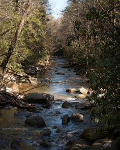 Downstream view of Skinny Creek at South Mountain State Park in western North Carolina. See this Instagram photo by @ashevillephotography