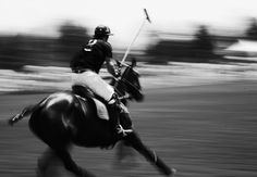 hard to get a good pan on horses; this is great Veuve Clicquot Polo (86)