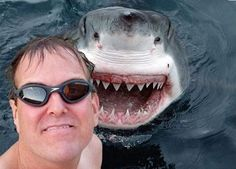 """""""Smile, you son of a bitch!"""" 