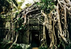 The Incredible Photos of Abandoned Temples in Cambodia