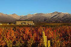 Private Vineyard Estates   The Vines of Mendoza
