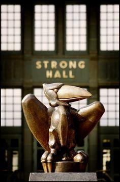 Bronze Jayhawk - University of Kansas.