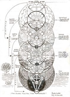 (not my caption) The Tree of Life, also called Jacob's Ladder. This is a Kabbalistic image but interestingly, the spheres in the tree overlay the flower of life 'sacred' geometric form and therefore represents a Primal Pattern of Nature. Tarot, Sacred Geometry Symbols, Fourth World, Jacob's Ladder, Spirit Science, Book Of Shadows, Tree Of Life, Magick, Witchcraft