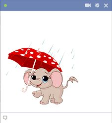 This cheerful elephant isn't going to let a few raindrops bring it down.