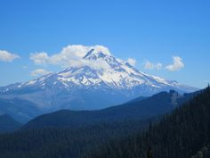Looking south at Mt. Hood from the PCT