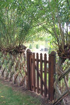 Garden gate in a woven living willow fence, at Cauldron Mill Charlbury/Spelsbury.