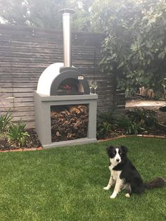 Another Happy customer with their The Alfresco Factory wood fired oven Wood Oven, Wood Fired Oven, Wood Fired Pizza, Pizza Oven For Sale, Woodfired Pizza Oven, Commercial Pizza Oven, Oven Design, Pizza Oven Outdoor, Fire Pizza
