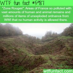 Zone Rouges - Gonna get back to you on this one... ~WTF not-so-fun facts