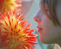 Flower Scavenger Hunt: A Fun Flower Garden Game - Children love to play outdoors and they love to play games, so a great way to combine these two things is to have a scavenger hunt. This article will help get you started. Click here for more info.