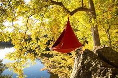 Loving Fall! Get out there! And get yourself a Cacoon hammock (single in chili red). www.cacoonusa.com