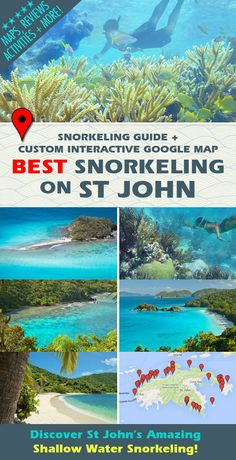 Discover St John's TOP snorkeling spots with helpful hints, maps and descriptions to help you enjoy the finest shallow water snorkeling on St John, USVI. Travel Destinations Beach, Vacation Places, Vacation Spots, Places To Travel, Italy Vacation, St Thomas Virgin Islands, St Johns Virgin Islands, St Croix Virgin Islands, St Thomas Vacation