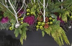 White birch with purple kale and lime green and silver balls, pine cones-striking Christmas/winter combo