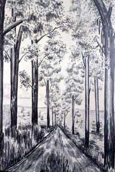 Eucalyptus lane - ficticious.