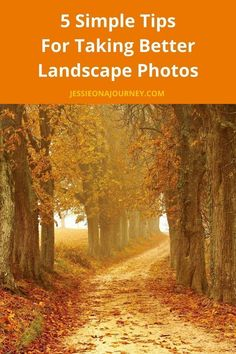 Landscape Photography Tips To Improve Your Travel PhotosLandscape Photography Tips To Improve Your Travel Photos
