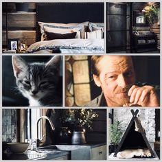 A thief had broken into Jack's home and stole some valuables including Chryssa kitty. Fortunately, Jack was able to track down the culprit and after a scuffle, got everything back. Ser Jorah, Iain Glen, Jaguar Xk, Fan Edits, Cozy Cabin, Rag And Bone, Kitty, Smooth, Little Kitty