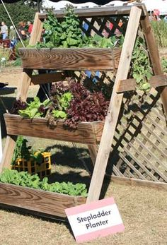 These window boxes placed on a stepladder-type stand allow gardeners to water and harvest without bending over. This model is one example of an accessible garden design.  (Photo by Gary Bachman) Love it!
