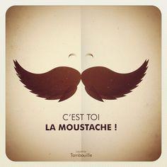 @Romuald Maheust... C'est toi la moustache !