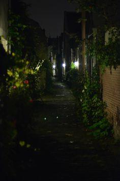 beautiful little street from Utrecht_NL Utrecht, Vacation, Photography, Travel, Beautiful, Vacations, Photograph, Viajes, Photography Business