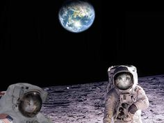 Cats on the moon for a sad Caturday.  RIP Neil Armstrong