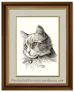 Portrait of a Adolescent Short-haired Tabby Cat done in pen and ink by pet portrait artist Shafali - Cats, Kittens, Dogs, Pups and Wildlife drawings, sketches, art.