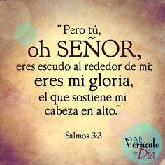 Pero Tú oh Señor, eres escudo alrededor de mi; mi gloria, y el que levanta mi cabeza. Salmos 3:3 /Frases ♥ Cristianas ♥ #frasescristianas