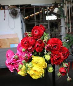 Take lovely gift flower inspirations for the new spring season #sydneyflowerdelivery