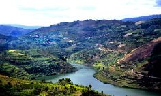 Drink in the view: Behind the wine country along Portugal's stunning Douro river | Via Daily Mail | 23/09/2015 #Portugal