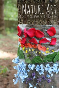 nature art rainbow nature collage - nature art project for kids
