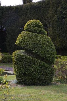 Site de Thomas Dupaigne, photographe passionné par l'univers du jardin et chasseurs de belles lumières. Topiary Garden, Garden Trees, Garden Art, Garden Design, Landscape Elements, Landscape Design, Amazing Gardens, Beautiful Gardens, Cedar Plant