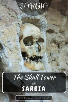 Did you know that theres a tower in Niš which is decorated with skulls? Well there is! This place is really spooky when you look at all those skulls you cant help yourself but wonder what went through their mind in those last minutes before they died World's Most Beautiful, Beautiful Places, Spooky Places, Hiking Tips, Tahiti, Beautiful Islands, Luxury Travel, Skulls, Tower