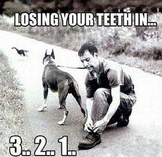 Losing your teeth in 3...2...1...