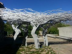 Tree sculpture at Tokara wine estate,Stellenbosch,South Africa African Tree, South African Design, Native Country, Living In Europe, Tree Sculpture, Art Of Living, Vacation Spots, Adventure Travel, Beautiful Places