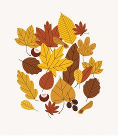 Autumn Leaves - Sarah Abbott