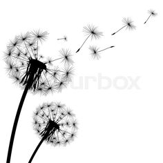 Stock vector of 'Black silhouette with flying dandelion buds'