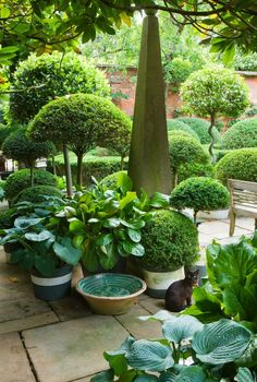 Anouska Hempel Design / repinned by Llewellyn Landscape & Garden Design www.llgd.co.uk - design | create | maintain