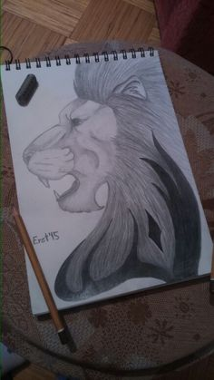 My own lion drawing