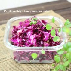 Honey And Mustard Salad, Purple Cabbage, Japanese Food, Food And Drink, Vegetables, Cooking, Recipes, Drinks, Red Cabbage