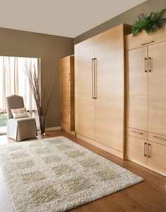 Space Issues – Solution: A Murphy Bed!