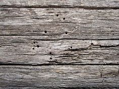 Wooden, Surface, Texture, Old, Board