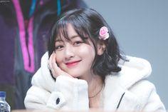 Photo album containing 13 pictures of Jihyo Nayeon, K Pop, South Korean Girls, Korean Girl Groups, Daniel Henney, Jihyo Twice, Twice Once, Myoui Mina, Dahyun