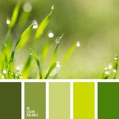 Color Palette: Color of greens