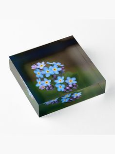 """Forget me not"" Acrylic Block by juneaasheim Forget Me Not, Photographic Prints, Diamond Cuts, It Is Finished, Crystals, Frame, Interior, Picture Frame, Indoor"
