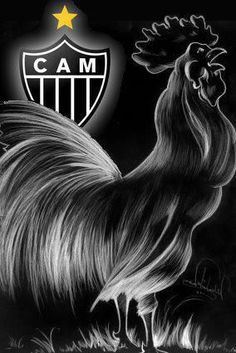 galo Galo Atletico Mg, Grand Prix, Sports, Tatoos, Layout, Posters, Retro, Best Friend Drawings, Rooster Art
